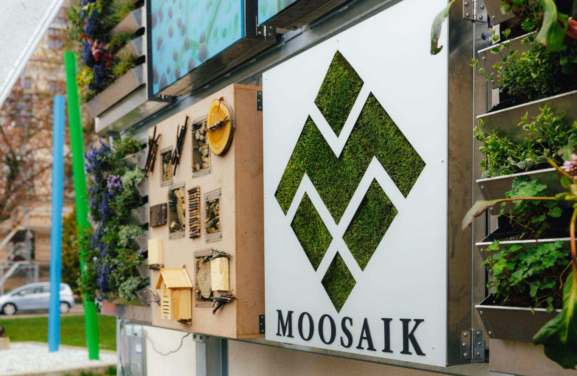 Moosaik