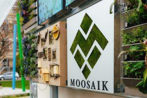 Mai 2021: Offizielle Gründung der Moosaik UG